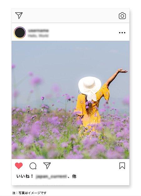 画像:投稿グループ②[コメント数が100を超える]
